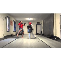 PUNCH - Urban Kick Shield
