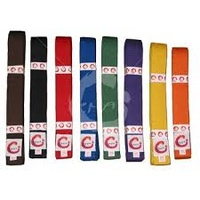 SMAI - Martial Arts Belt - Full Colour