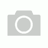 CSG Boxing Gloves